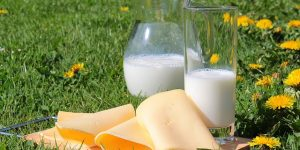 Alimentos que contienen ácido láctico