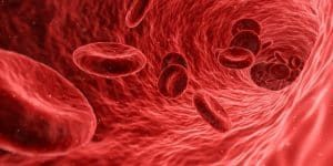 ácido láctico en la sangre